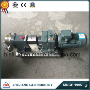 Colloid Pump Type Lube Oil Transfer Pump/Lube Oil Pump pictures & photos