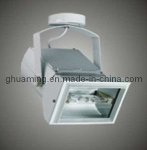 Track Metal Halide Light (SW-S3056)