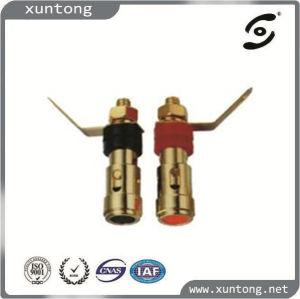 XLR Microphone Cable RCA Mini Connector RCA XLR Plug pictures & photos