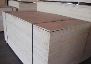 Packing Grade Bintangor Plywood, Dbb/Cc Plywood pictures & photos