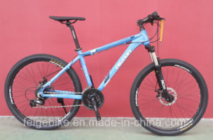 Castro Good Quality 24sp Alloy Mountain Bicycle (FP-MTB-A072) pictures & photos