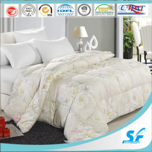 Super Comfortable Luxury Adult Comforter Quilt pictures & photos