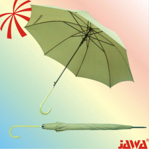 Auto Open Straight Umbrella with Match Color Handle
