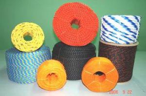 PP/PE Rope Making Machines (SJ) pictures & photos