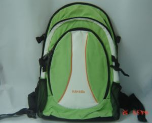 600D Sport Backpack/Travel Backpack/Leisure Backpack