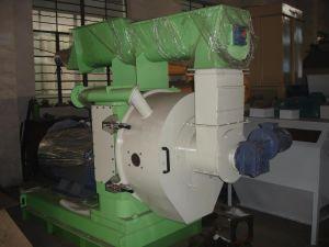 Wood Pellet Machine (SZLH508) pictures & photos