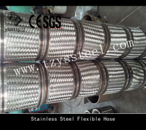 Stainless Steel Double Lock Elastic Shower Hose
