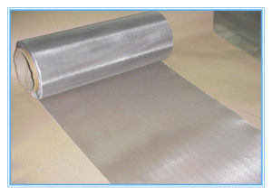High Quality Stainless Steel Square Hole Wire Mesh/ Welded Wire Mesh pictures & photos