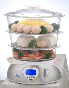 Mechanical Food Steamer (FS-900BE)