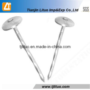 Good Quality Twisted Shank Umbrella Head Roofing Nails pictures & photos