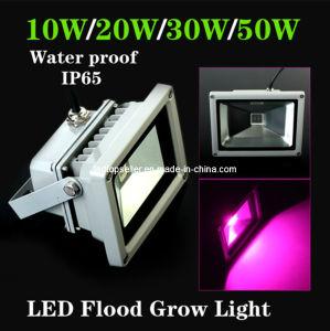 New 10W/20W/30W/50W Waterproof LED Flood Grow Light (ZW0031)