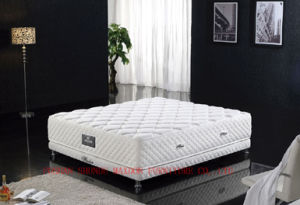 Pocket Spring / Non-Toxic Mattress (MA13) pictures & photos