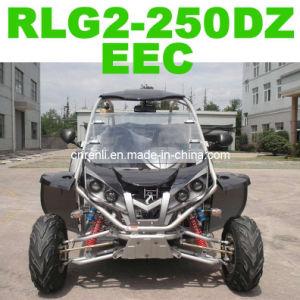 EEC Go Kart (RLG2-250DZ)