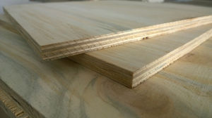 Full Pine Commercial Plywood pictures & photos