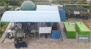 100kw Turnkey Poultry Waste Treatment Biogas Power Plant/ Biomass Power Plant/Biogas Scubber/Biogas Bag/Biogas Holder/ Biogas Tank/ with CE/ISO Approved pictures & photos