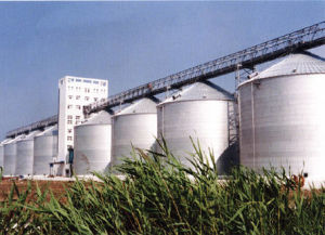 Grain Silos for Maize Storage