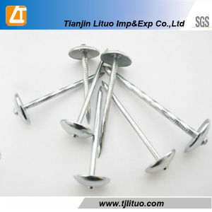 Umbrella Head Roofing Nails with Rubber Washer pictures & photos
