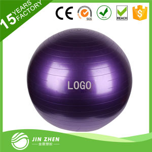 Exercise Gym Swiss Stability Ball