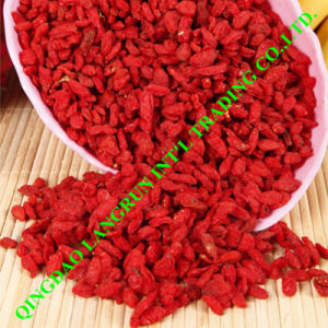 Goji Berries Organic Lycii Wolfberry Dried Ningxia Goji
