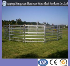 Cattle Yard Panel for Farm /Cheap Cattle Yard Panel pictures & photos