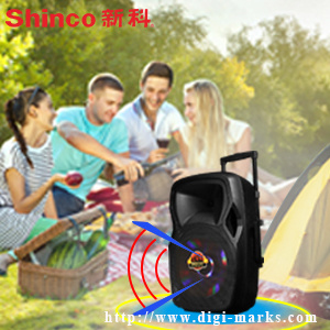 Popular 15 Inches Plastic Portable Speaker with Battery pictures & photos