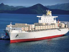 Sea Freight Services From China to Worldwide (FUL/LCL container)