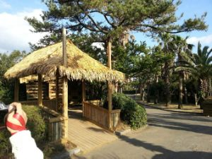 Design Synthetic Simulation Thatch Roof for Garden/Seaside Bars pictures & photos