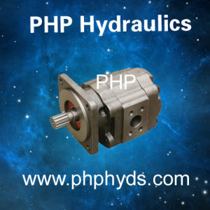 Hydraulic Gear Pump as Replacement Parker Commerical Pgp51 Single Gear Pump pictures & photos