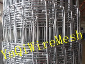 China Good Supplier of Grassland Fence in Competitive Price on Hot Sale pictures & photos