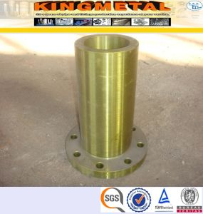 ASTM A182 F316L Stainless Steel RF Long Weld Neck Flange pictures & photos