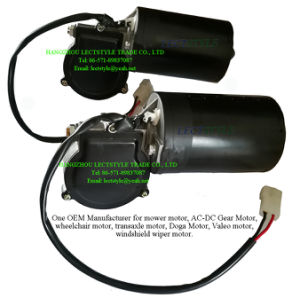 24V 80W 30rpm-45rpm DC Electrical Windshield Wiper Worm Gear Motor with Plain Key & Screw Shaft pictures & photos