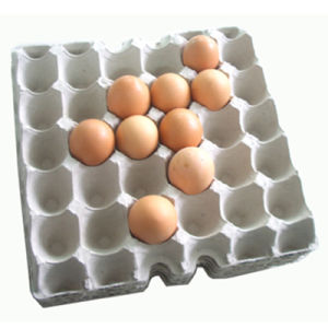 Automatic High Quality Egg Tray Machine (ET2000) pictures & photos