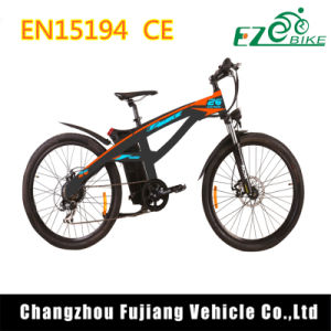 Brilliant High Power E Bike with Quick Release Clamp pictures & photos