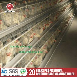 2017 Poultry Farms Hot Sale Layer Cage with High Quality pictures & photos