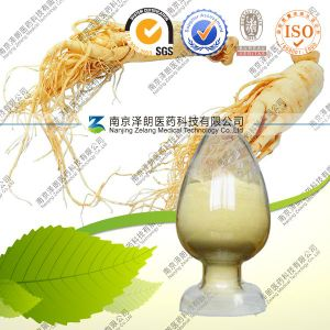 Natural Ginseng Stem and Leaf Extract Ginsenoside 80% pictures & photos