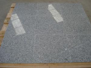 Big Slabs Grey Granite 603 Slabs pictures & photos