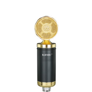Computer Network K Song Professional Recording Microphone pictures & photos