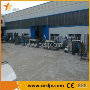 Pet Bottle Flakes Washing Production Line pictures & photos
