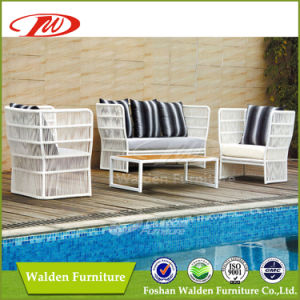 Outdoor Furniture Pool Side Rattan Sofa (DH-867) pictures & photos
