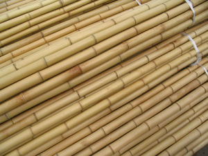 Bamboo Stick pictures & photos