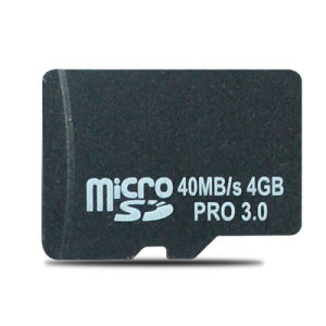64MB 128MB 256MB 512MB 1GB 2GB 4GB 8GB 16GB 32GB 64GB 128GB Microsd SDHC Sdxc Memory Card pictures & photos