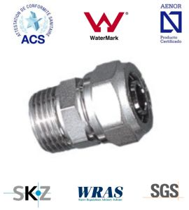 Compression Fitting - Brass Fitting - Plumbing Fitting (Male Straight) pictures & photos