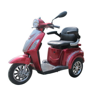with EEC Approved Reliable Quality Electric Tricycle for Adult