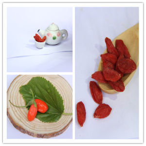 Goji Berry 350grains/50g