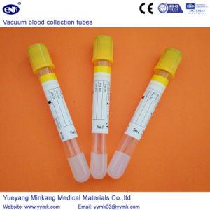 Vacuum Blood Collection Tubes Sst Tube (ENK-CXG-022) pictures & photos