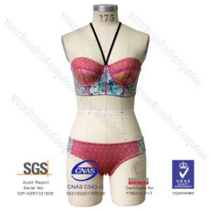 2016 Newest Women′s Neoprene Swimming Suit Swimwear Push up Bikini pictures & photos