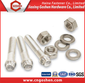 Stainless Steel Hex Bolt and Nuts pictures & photos