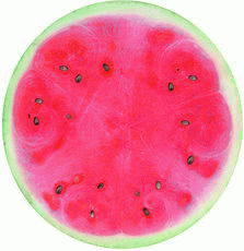 2015 Hot Selling Watermelon Round Beach Towel with Tassels pictures & photos