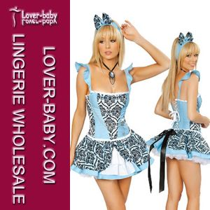 Sexy Lingerie Costumes for Adult Woman (L15355) pictures & photos