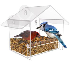 High Quality Clear Acrylic Bird Feeder with Strong Suction Cups pictures & photos